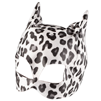 Masks & Dress Up